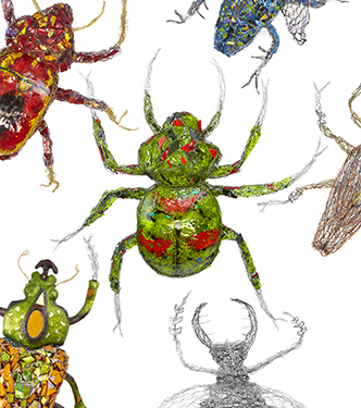 SPECTACULAR BEETLES: Exploring the Order of Coleoptera with JOAN DANZIGER