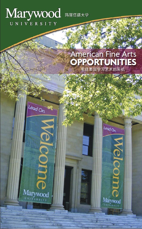 American Fine Arts Opportunities Program