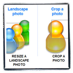 Need to resize or crop a photo quickly?