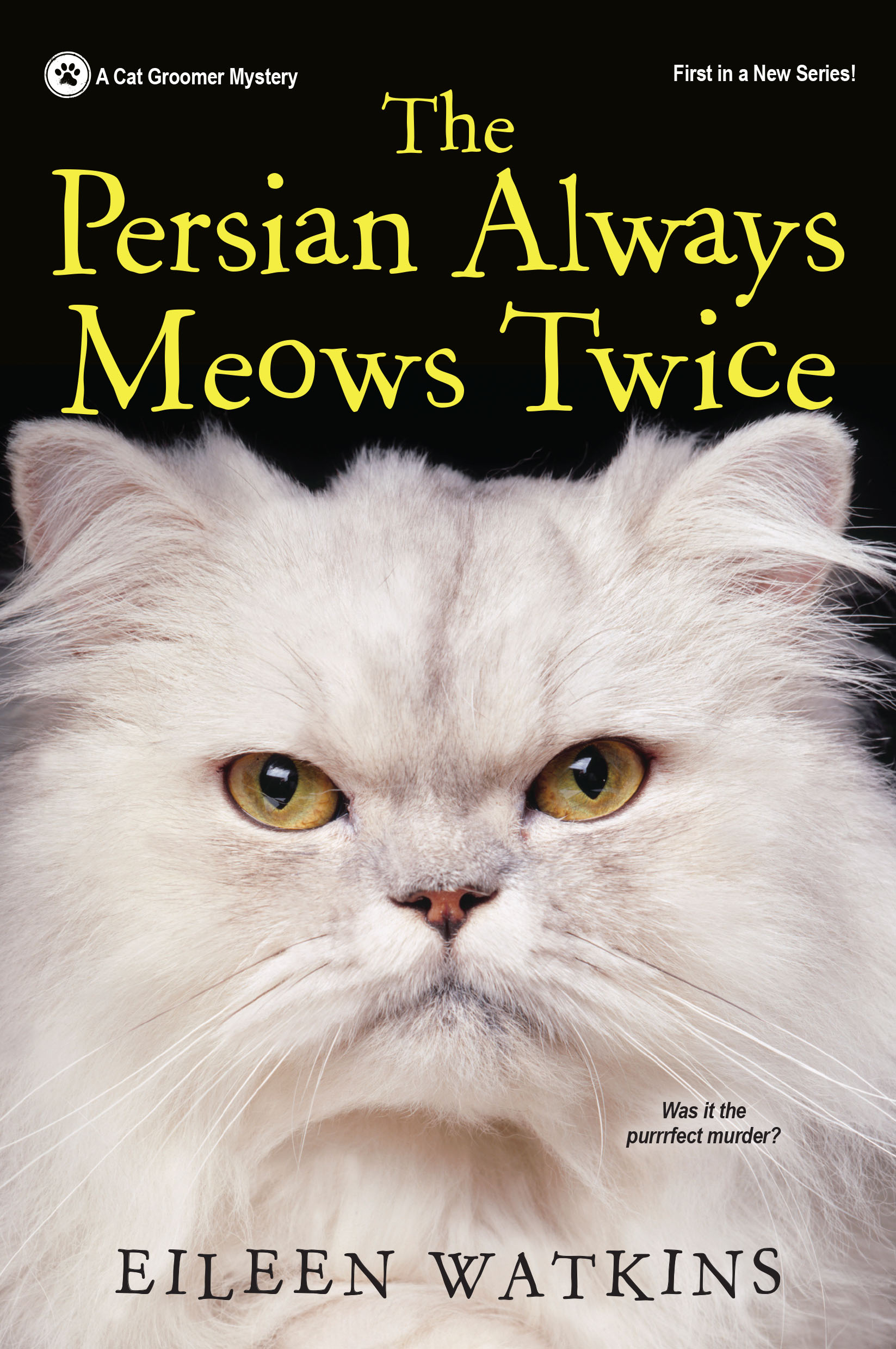 the persian cat always meows book cover