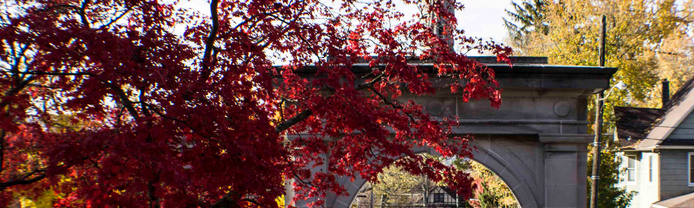 memorial arch red leaves fall