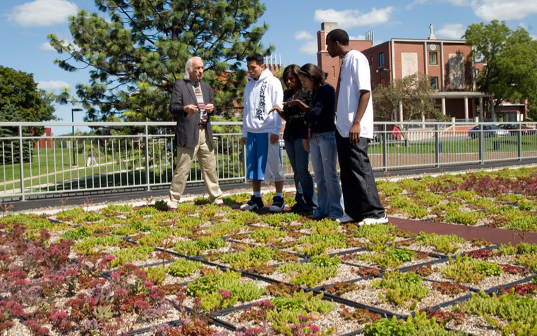 students green roof