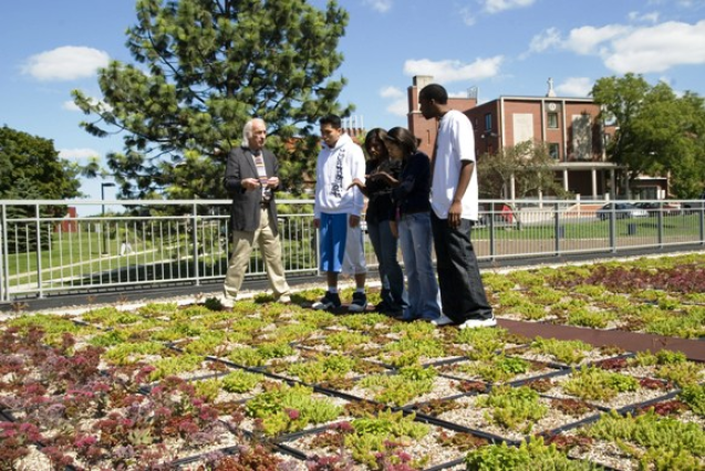 students on green roof