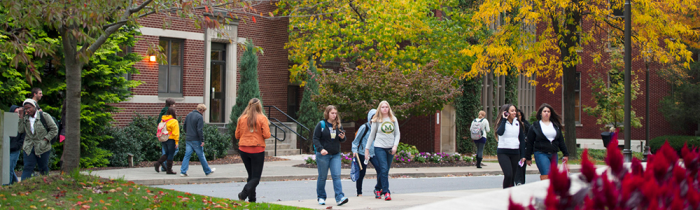 students walking in autumn